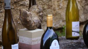 Die besten Weine Frankens bei dem Weinwettbewerb Best of Gold