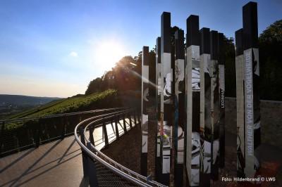 terroir f Würzburg Stein, schönste Weinsicht Deutschlands in franken