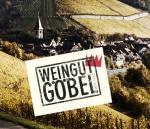 Online-Weinprobe Martin Göbel